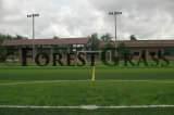 Cheaper Price Stem Shape Artificial Grass for Mini Football Purpose