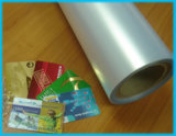 Transparent PVC Overlay for PVC Card (Coated&Uncoated)