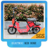 Electric Pocket Bike for Kids