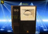 R1 Professional Speakers, PA Stage Speaker, Audio Monitor