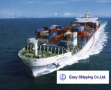 Consolidate Container Shipping Service From China to Germany Shipping