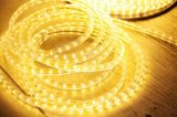 SMD5050 LED Rope Light - High Voltage 110V/220V LED Strip (HVSMD5050-60)