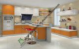 Classical Design UV Board Kitchen Cabinet (zs-430)