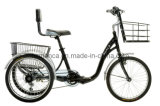 Electric Tricycle (MT502)