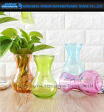 Colored Water Plant Furnishing Articles Glass Craft Floral Vase