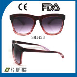 2014new Fashion Sunglasses with The PC Frame and AC Lens