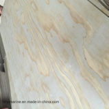 Best Price Radiate Pine Plywood for Package Mr Glue
