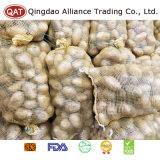 Good Price Fresh Whole Potatoes