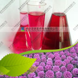 Manufacturer Supply Water Soluble Cabbage Red Color