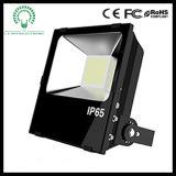 Factory Waterproof 30W/50W/70W/100W/150W/200W LED Projector/Floodlight Lighting
