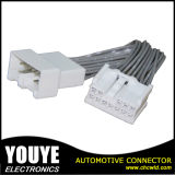 High Temperature Resistant Automobiles Cable Wire Harness