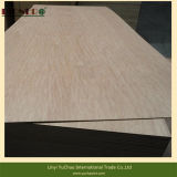 Cheapest Price Good Quality Bintangor Plywood