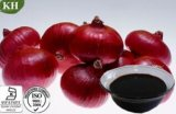 Onion Extract Allium Cepa Extract