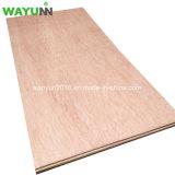 1220X2440mm Poplar Core Okoume Mahogany Veneer Plywood Form Manufacturer