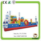 2017 New Inflatable Castle Bouncer for Children