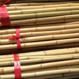 Nutural Bamboo Pole for Agricultural