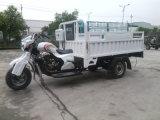 250cc Three Wheel Cargo Motorcycle for Sale