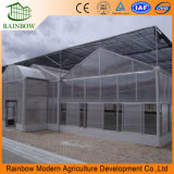 Multi-Span Glasshouse with Inside and Outside Shading System