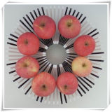 DIY Fruit Decoration Plastic Plate for Food (VK14004)