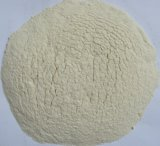 Dehydrated Garlic Powder 100-120mesh