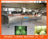 Ozone Fruit and Vegetable Washer Ozone Washing Machine Tscq-3000