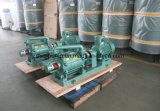 Water Ring Vacuum Pump Used to Exhaust Condensable Gases