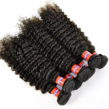 Best Quality 5A Grade Malaysian Kinky Curly Virgin Hair Extensions
