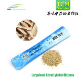 Traditional Chinese Medicine, Largehead Atractylodes Rhizome Granules