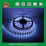 5050 Double Line 28.8W/Meter LED Lights Strips