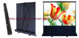 Projector Screen with Floor Pull-up