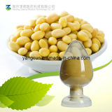 Pure Natural Daidzein Soybean Extract