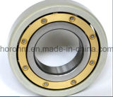 Electrically Insulated Rolling Bearing-Bearing (6317 M/C3 Vl0241)