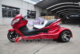 High Quality Hot Selling 300cc ATV (AT3001)