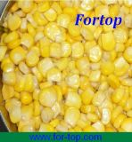 2013 Best Quality Canned Sweet Corn in Brine