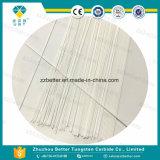 Zirconia Ceramic Plunger
