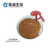 Organic Reishi Mushroom Powder Ganoderma Lucidum Extract