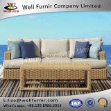 Well Furnir Wicker Sofa with Cushion