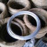 7kg/Roll Electro Galvanized Binding Wire