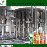 SUS304 Material Fresh Juice Bottling Machine (3 in 1)