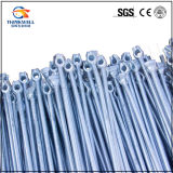 Hot DIP Galvanized Forged Steel Pole Screw Anchor Rod