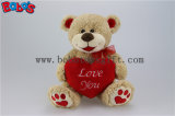 Valentine Teddy Bears with Red Heart Pillow and Embroidery Paw