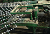 Hot Sale PVC Coated Chain Link Fence/Diamond Mesh with Favorable Price