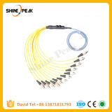 1 Meter 12 Fiber Multimode MPO Male LC Fanout Patchcords