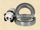 Tapered Roller Bearing/Wheel Hub Bearing (30202~32230)