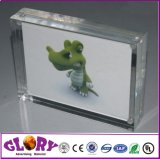 Plastic Display Double Sided Acrylic Photo Frame with Magnets