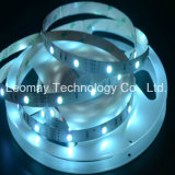 SMD5050 3 Chips Flexible LED Strips Light From China Factory