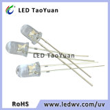 5mm UV LEDs Light-Emitting Diode Violet