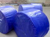 Beat Nylon Conver System Plastic Chain Conveyor Rubber Belt
