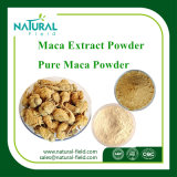 Maca Extract Powder   4: 1, 10: 1, Maca Powder