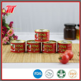 Wholesale Puree 70g Tomato Paste with Low Price